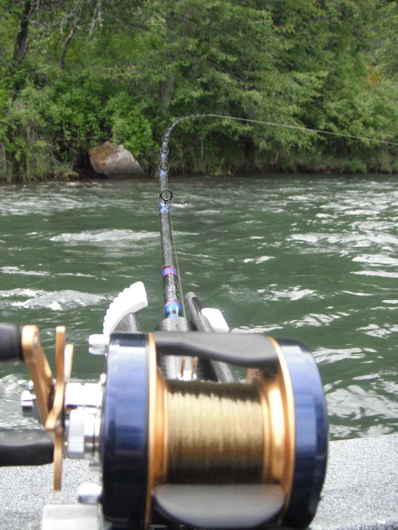 Reel tech custom salmon rods in action for Salmon fishing reels